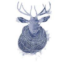 Woolen creature Photographic Print