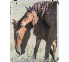 The Safest Place on Earth iPad Case/Skin