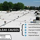 Quotographics by Thornton Consulting - UK Leak Detection Company by Infographics