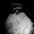 OLD FATHER CHRISTMAS by leonie7