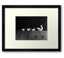 3cm Family Swim Framed Print