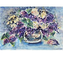 lilac flowers Photographic Print