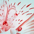 Drawing Day Red Bubble Nectar by Mui-Ling Teh