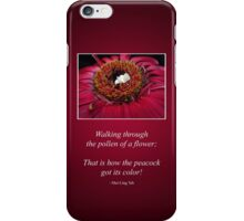 Little White Peacock in a Field of Colour iPhone Case/Skin