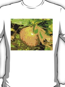 SUNSHINE IN THE ORCHARD T-Shirt