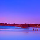 Blue Morning by wallarooimages