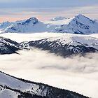 Wonderful Winter by Ryan Davison Crisp