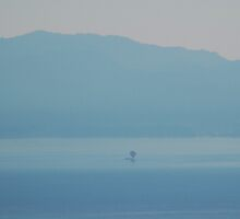 Hot Air Balloon on Lake Tahoe by Jared Manninen