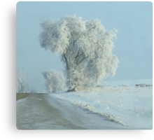 Winter Across The Intersection...On Freezeout Rd. !!!...One Basic Color. Monotone Beauty Challenge Winner ! Canvas Print