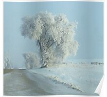 Winter Across The Intersection...On Freezeout Rd. !!!...One Basic Color. Monotone Beauty Challenge Winner ! Poster