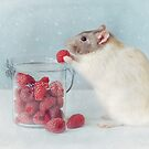 Snoozy loves raspberries. by Ellen van Deelen