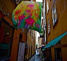 Stockholm - Gamla Stan. Sweden. by Doctor Andrzej Goszcz. Has been sold ! Sales: 2. Views: 1209 .  by © Andrzej Goszcz,M.D. Ph.D