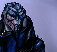 Garrus Vakarian - Mass Effect 2 by SarenH