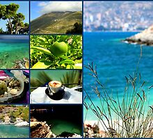 Collage/Postcard from Albania 4 - Travel Photography by JuliaRokicka