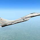 German MiG-29 by Walter Colvin