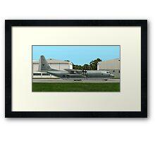 RAAF  Lockheed C-130 Hercules  Framed Print