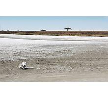 Death, & Dead Lake, Tanzania  Photographic Print