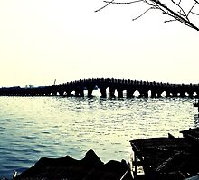 Silhouette of a Bridge by junkgirl