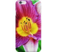 Little Grapette iPhone Case/Skin