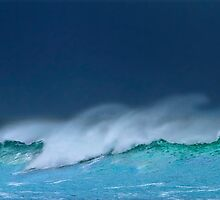 The Wave by Angelika  Vogel