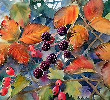 Fruity hedgerow by Ann Mortimer