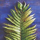 Woodland Fern by Olivia Joy StClaire