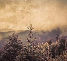 Mystic Fog by PiyushBorole