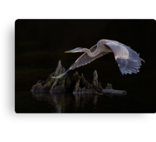 After meal flight... Canvas Print