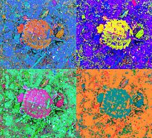 A Sequence of Toddler Turtles – Blue & More by Mike Solomonson