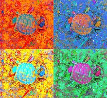 A Sequence of Toddler Turtles – Orange & More by Mike Solomonson