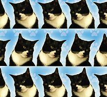Cute Tuxedo Cat Pattern  by mytshirtfort