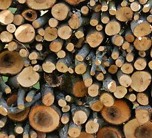 Small branches in woodpile by LisaRent