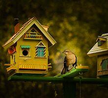 Birds House by LudaNayvelt