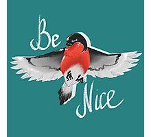 Bullfinch bird Photographic Print