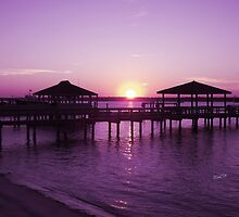 Purple Sunset by Barbny