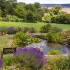 A French Country Garden by Elaine Teague