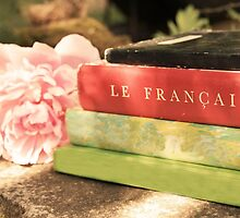Black Green Red Vintage French Books and Pink Flower by BrookeRyanPhoto