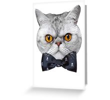 Mr Eggs the Cat is Ready for His Date Greeting Card