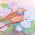 Pastel Bird by Lynn Wright