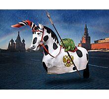 Vladimir The Fairy-Hunter Photographic Print