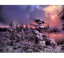 The Last Big Snow Photographic Print