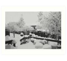 Winter In The Garden  Art Print