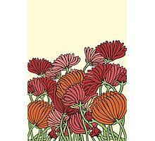 The Retro Garden Flowers Photographic Print