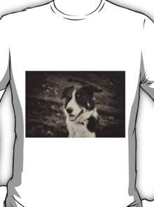 The world's friendliest sheep dog T-Shirt