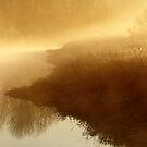 18.10.2014: October Morning at Loimijoki River I by Petri Volanen