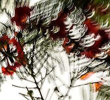 Chiaroscuro #03 by LouD