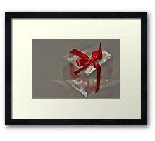 Gift for All Seasons Framed Print