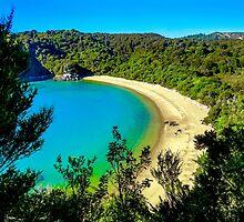 Beautiful beach at Abel Tasman National Park, New Zealand by Luke Farmer