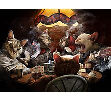 Cats play poker Photographic Print