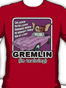 Gremlins don't follow ALL the rules T-Shirt